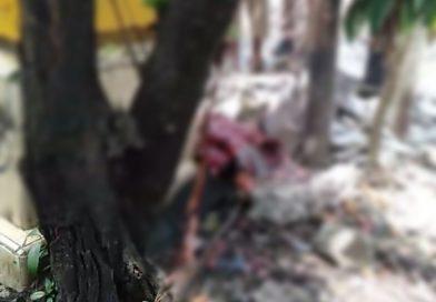 Diduga Akibat Bom Bunuh Diri, Potongan Tubuh Berserakan di Gereja Katedral